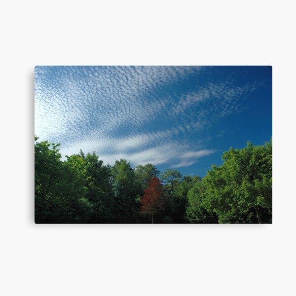 Pillow Clouds Canvas Print