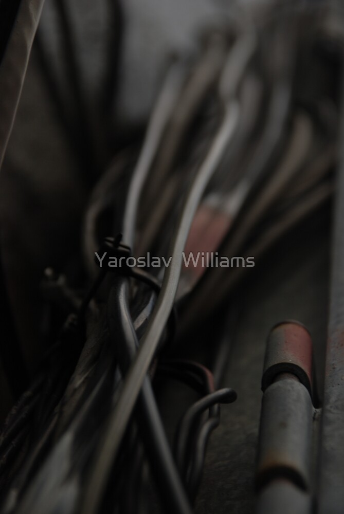 Wires by Yaroslav  Williams