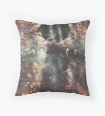 Soleil Noir Throw Pillow
