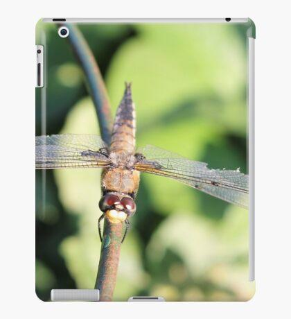 Damaged Dragonfly iPad Case/Skin