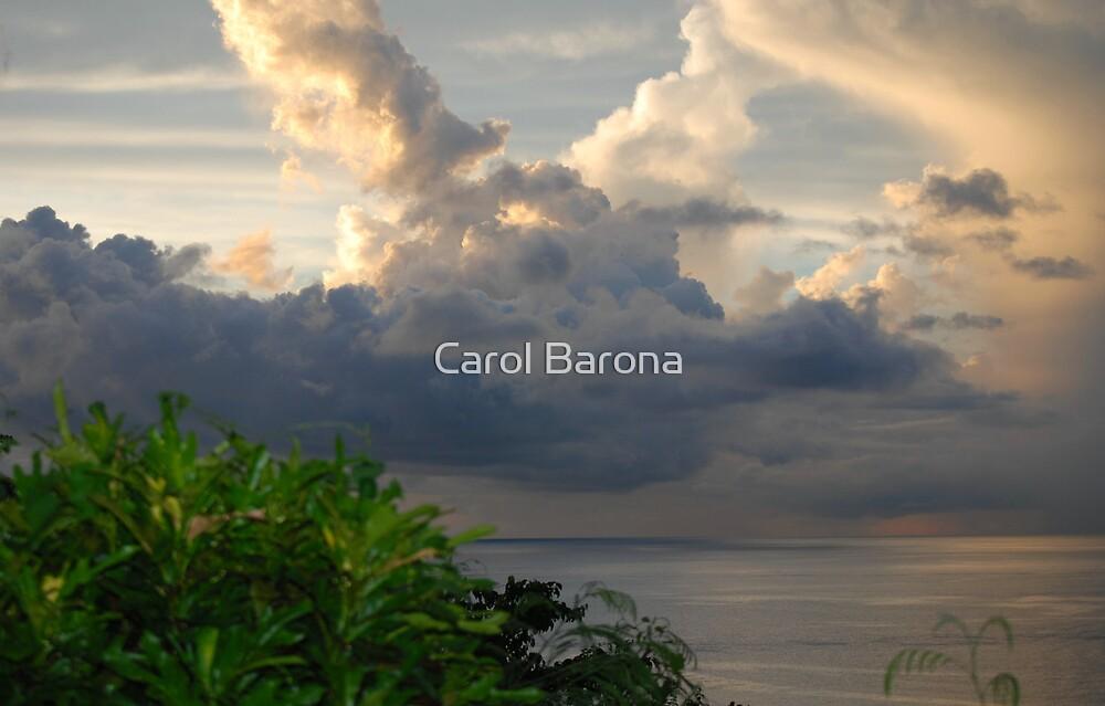 Rabbit in the Sky by Carol Barona