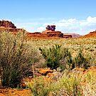 Arizona  - Monument Valley by Buckwhite