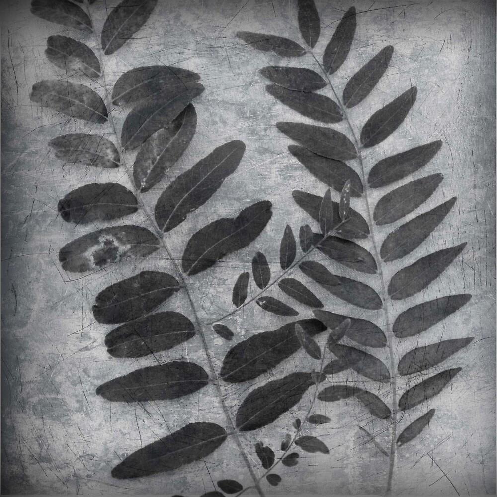 End of the Season Leaf by Robert Baker