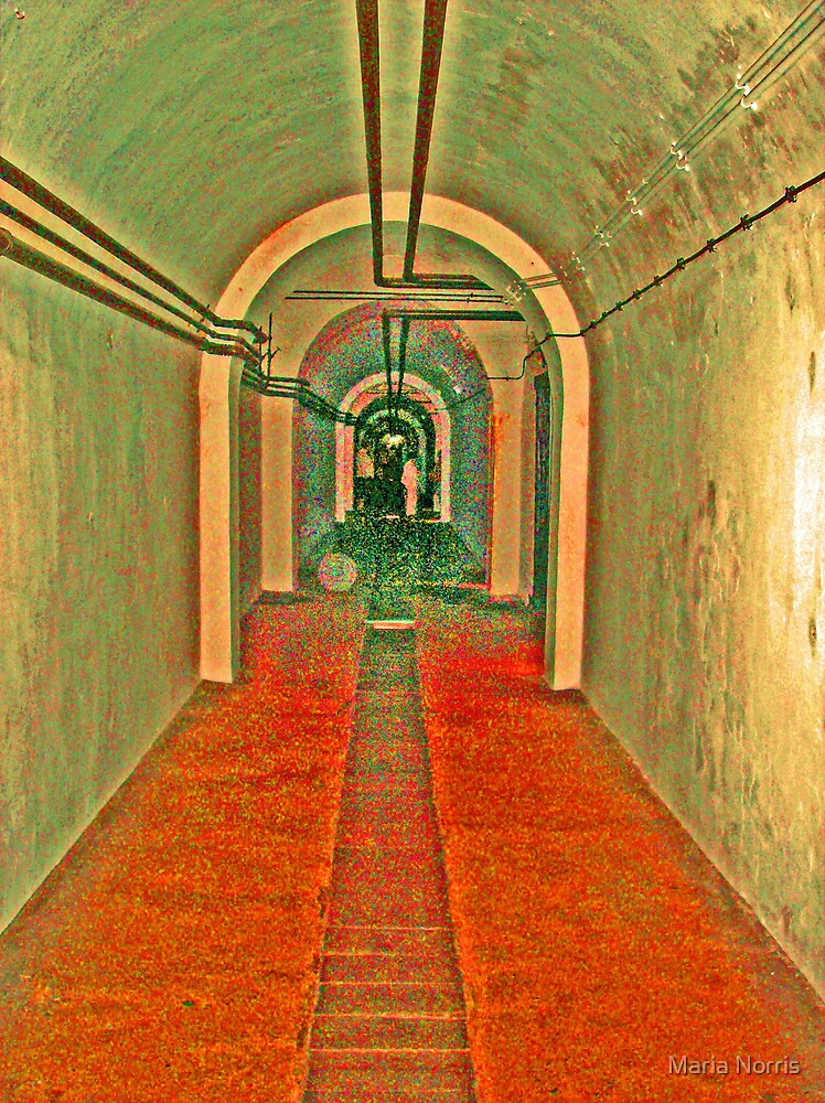 Jersey War Tunnel by Maria Norris