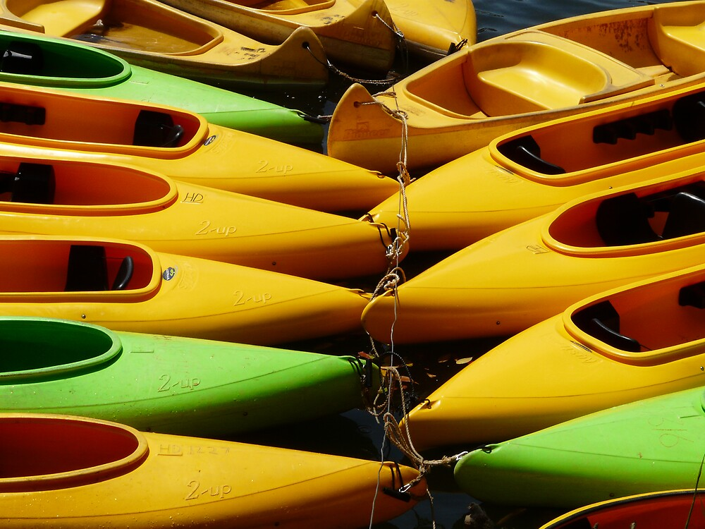 Canoes by edward turnbull