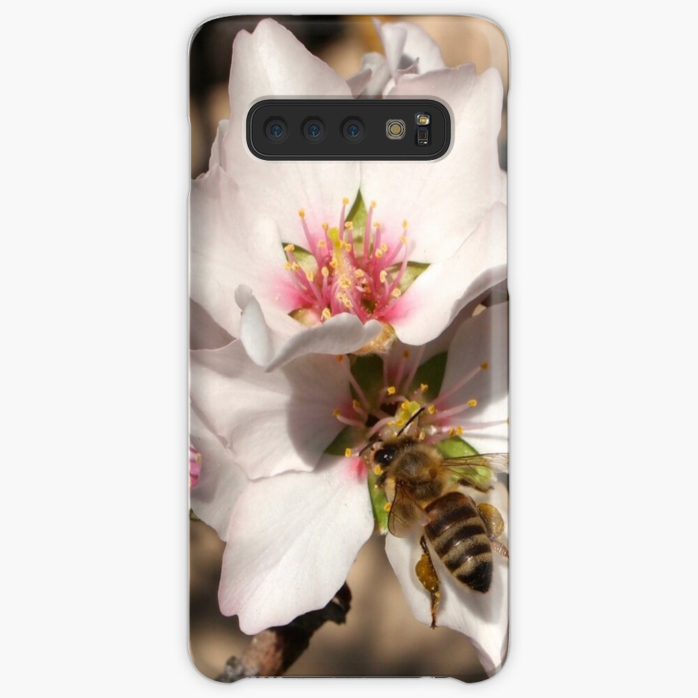 Bee on Apricot Blossom Case & Skin for Samsung Galaxy