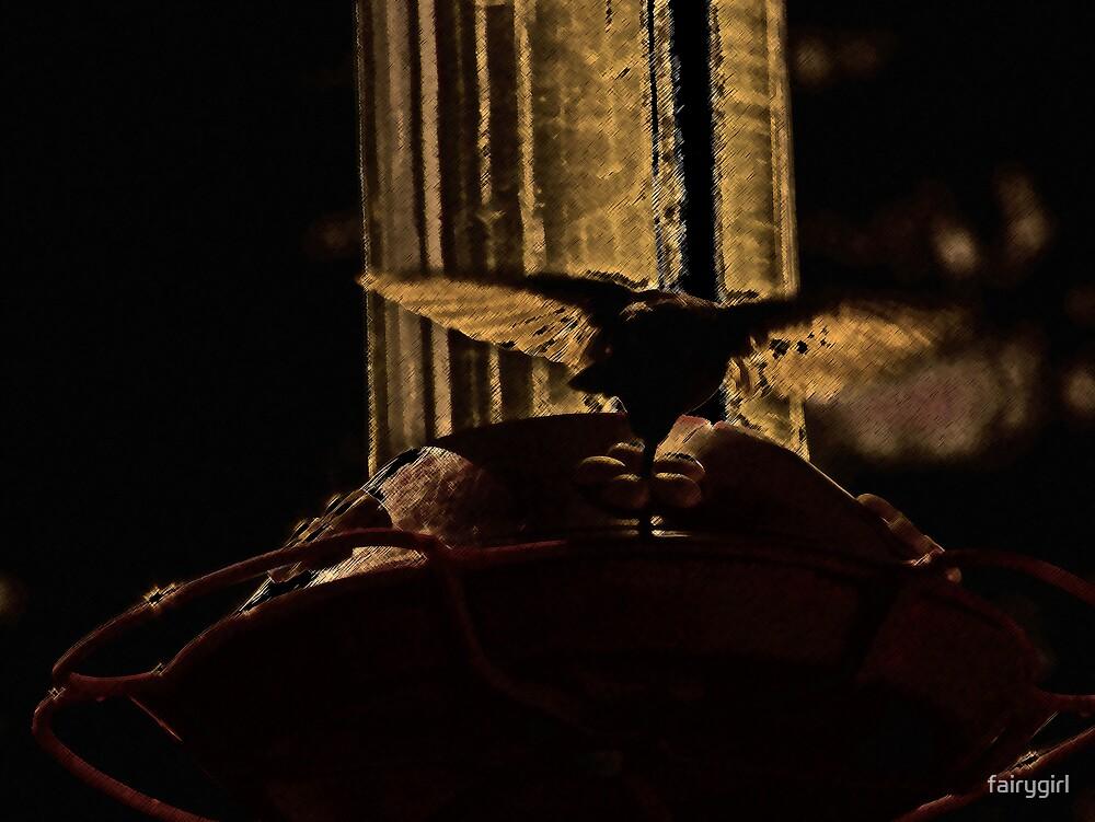 Hummingbird2 by fairygirl