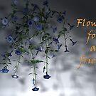 Flowers for a friend by Annika Strömgren