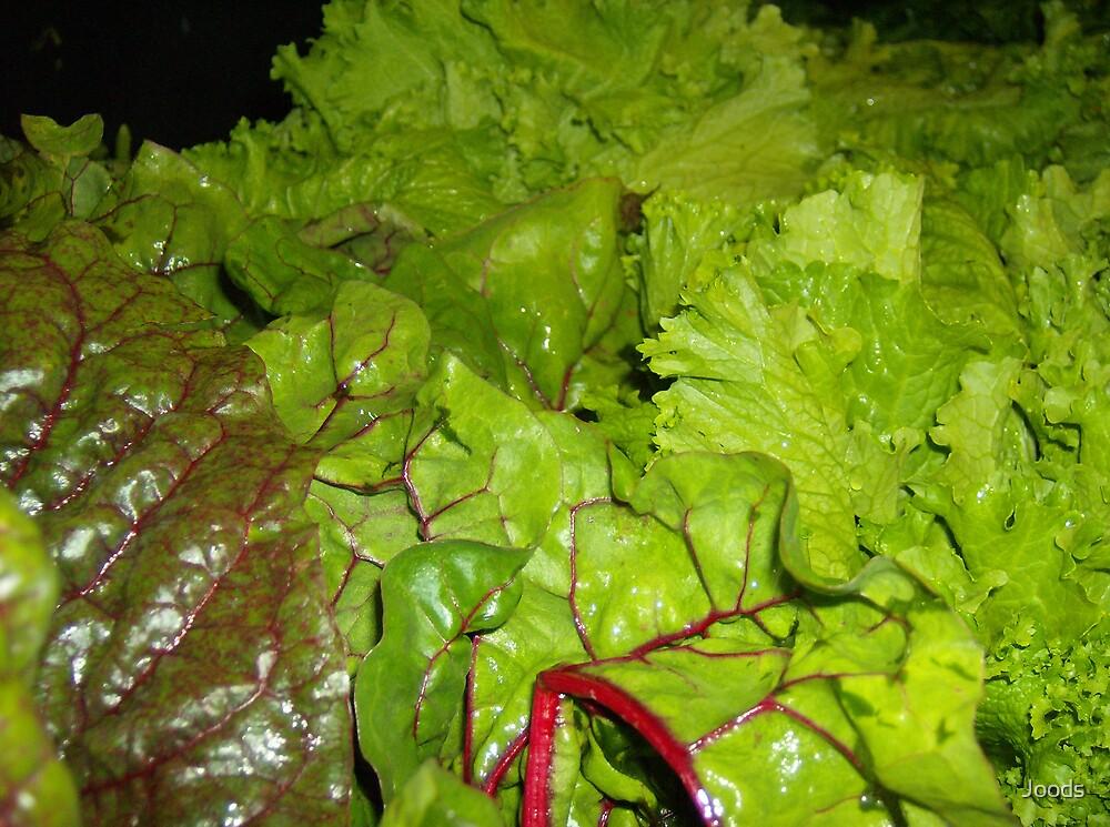 Leafy Rawness by Joods