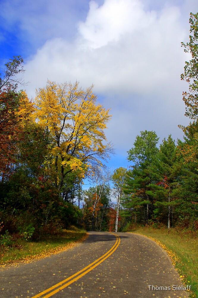 Autumn Road by Thomas Sielaff