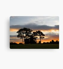 Sunset through the Trees  in Cardiff Canvas Print