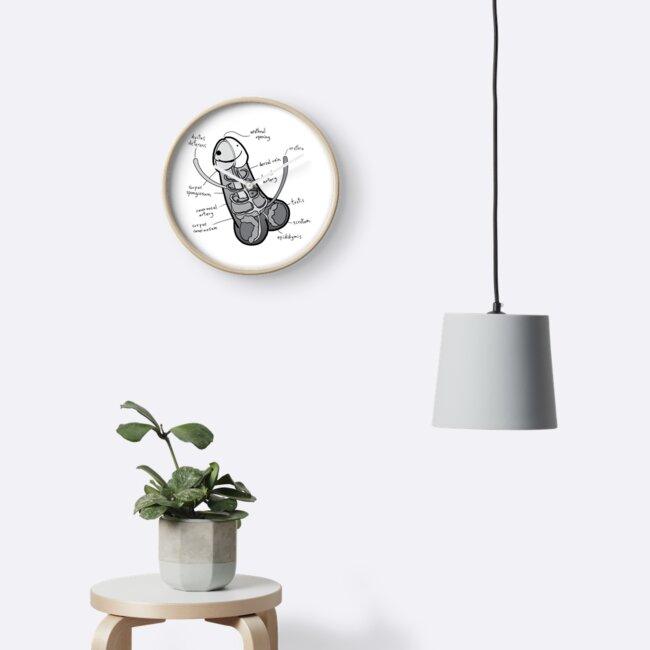 Relojes «La anatomía de un pene - escala de grises» de MellyMolly ...