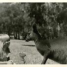 GG and her new best friend, Kangaroo by georgiegirl