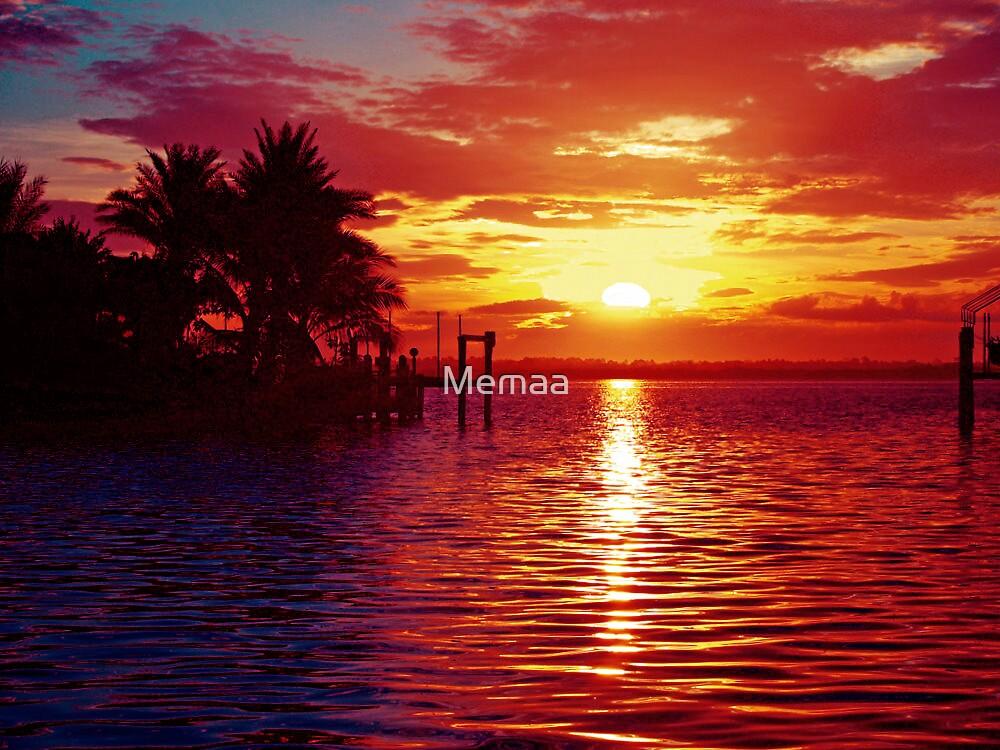 Sun Rise On The Myakka River by Memaa