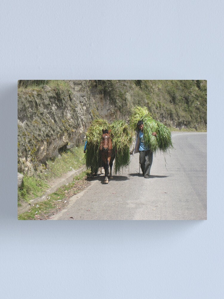 Alternate view of Hauling Grass Canvas Print