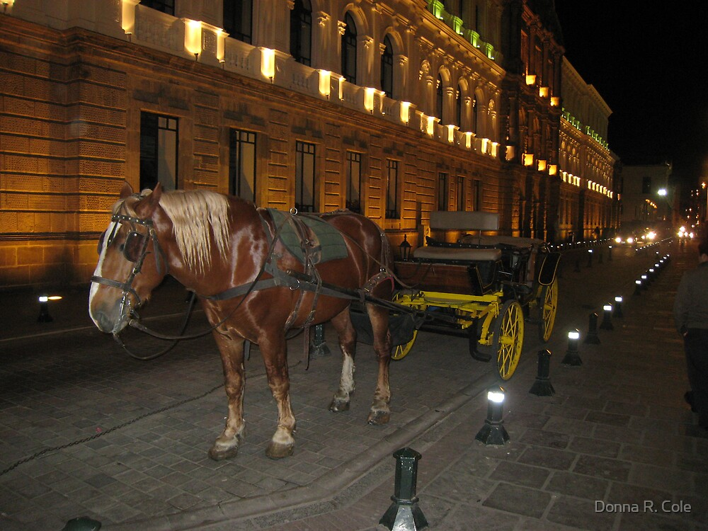 Horse and Buggy by Donna R. Cole