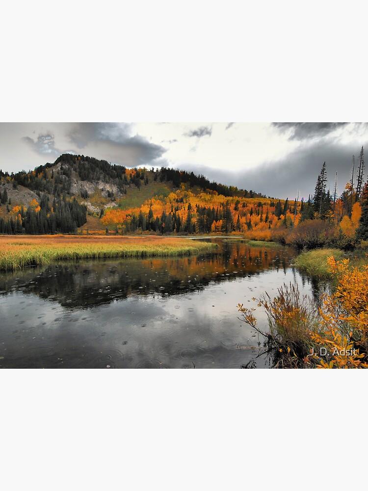 October Rain by adsitprojectpro