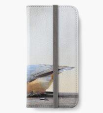 Nuthatch feeding iPhone Wallet/Case/Skin