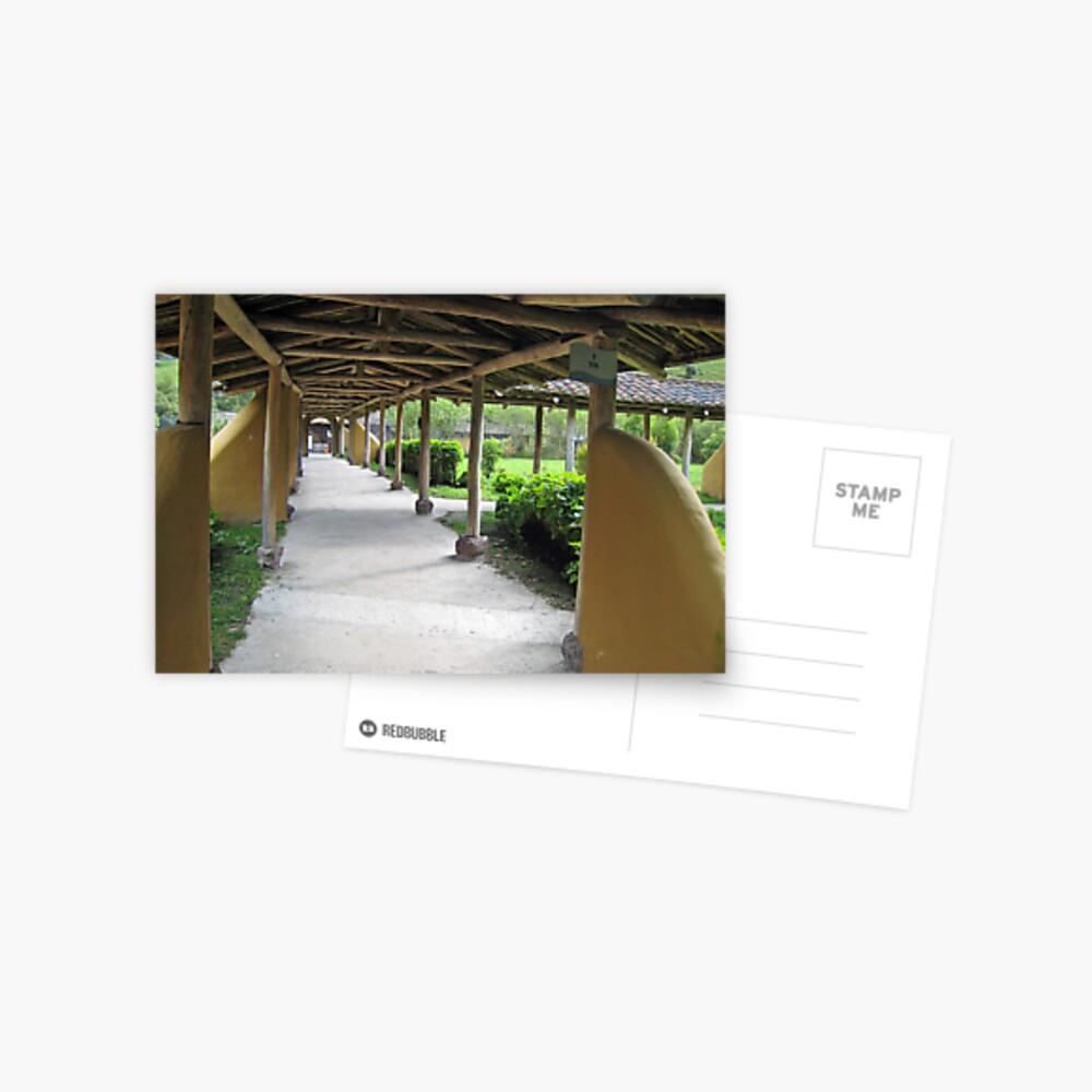 Timber Line Postcard