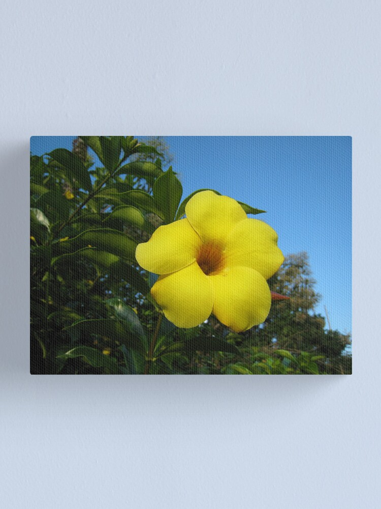 Alternate view of Yellow Happiness Canvas Print