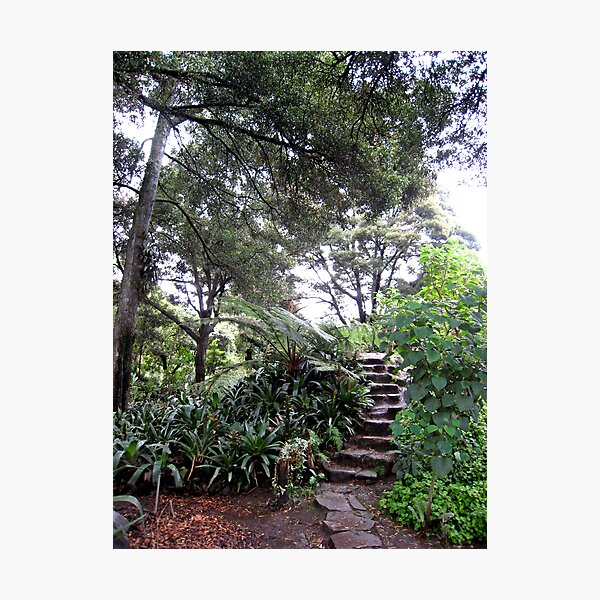 Up the Garden Steps Photographic Print