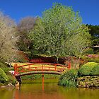 Toowoomba Japanese Gardens by Penny Smith