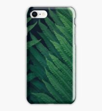 Fresh young bright dark green fern, natural background texture, wild plants in summer iPhone Case/Skin