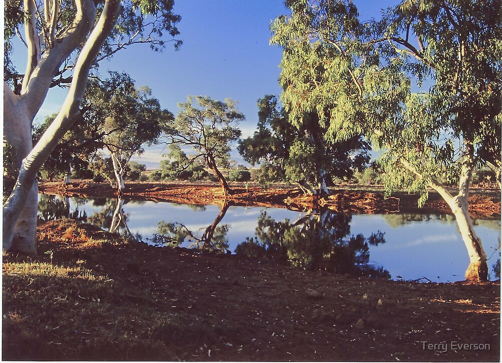 Outback Billabong by Terry Everson
