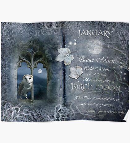 Januray : Birch Moon Poster