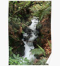 Buried Village Waterfall, Rotorua, New Zealand Poster