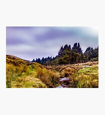 Bridge over moorland steam Photographic Print