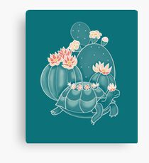Find a tortoise  Canvas Print