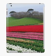 A colourful field of tulips iPad Case/Skin
