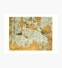 Cave Paintings Art Print
