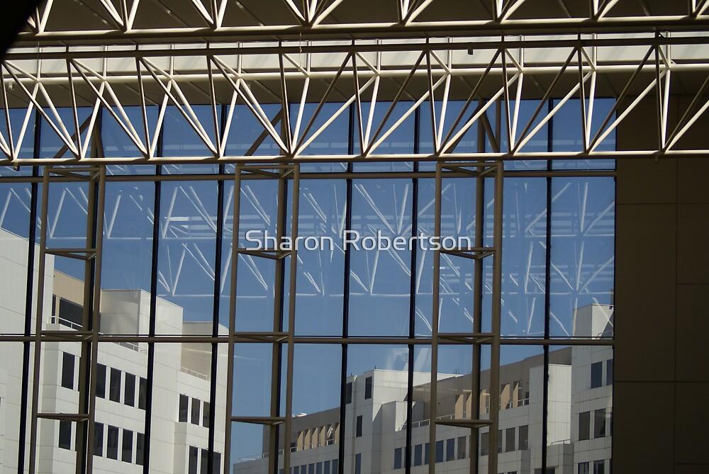Windows by Sharon Robertson