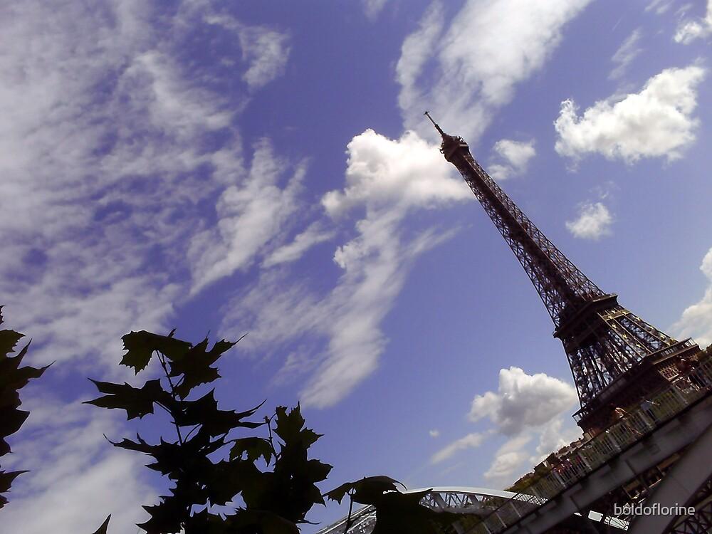 Eiffel Tower 2 by boldoflorine