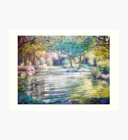 Vogel's Pond Art Print
