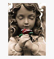 Serenity Rose Photographic Print