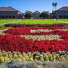 USA. California. Stanford. Stanford University. by vadim19
