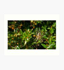 Spider! Art Print