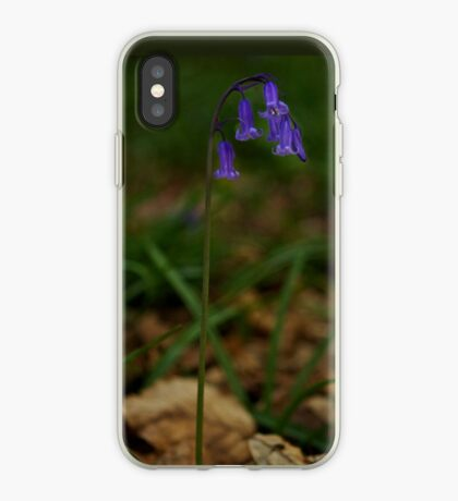 Single Bluebell in Prehen Woods, Derry iPhone Case