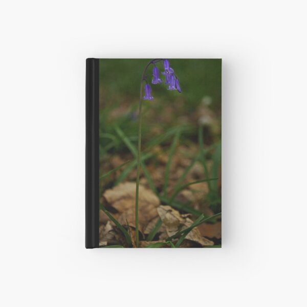Single Bluebell in Prehen Woods, Derry Hardcover Journal