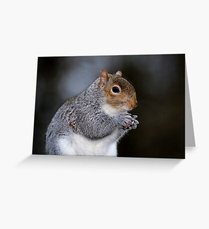Peanut Time Greeting Card