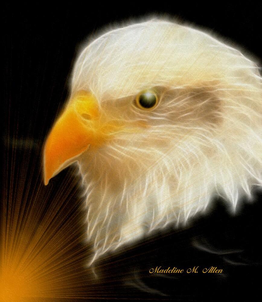 EAGLE WATCH by Madeline M  Allen