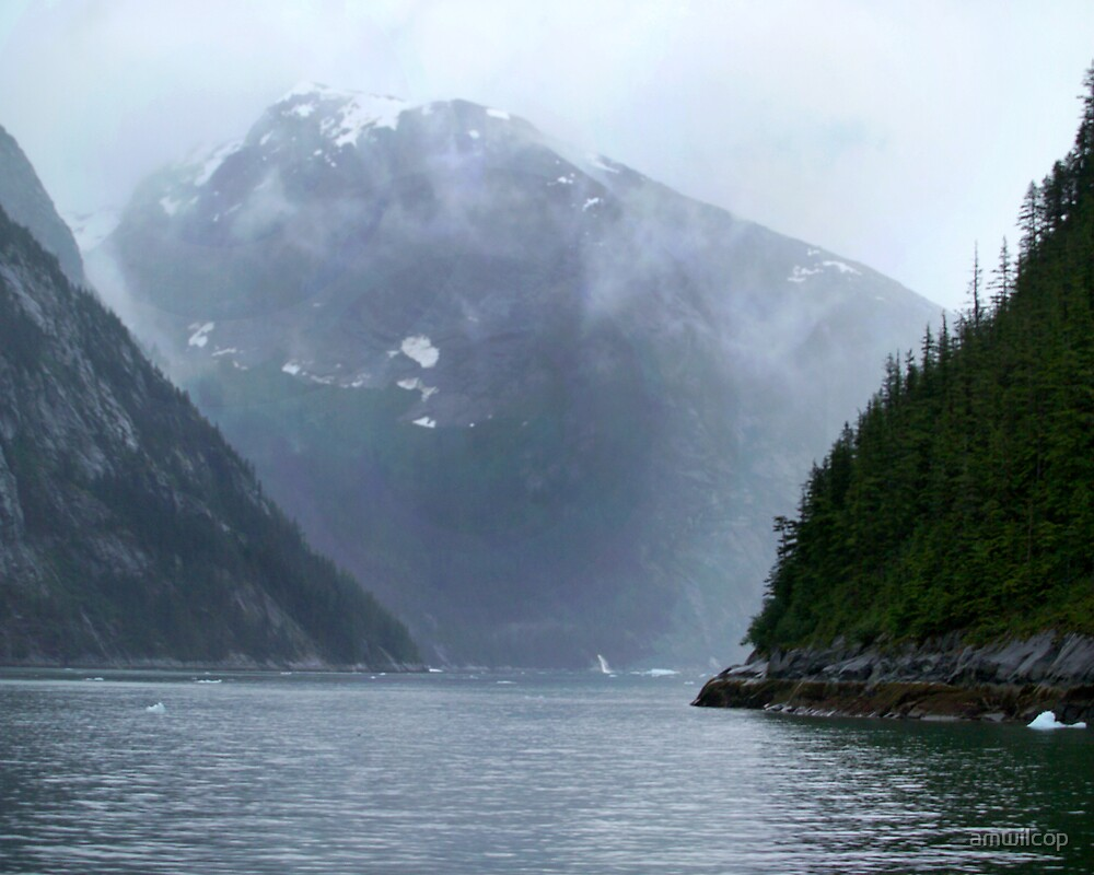Onto Tracy Arm by amwilcop