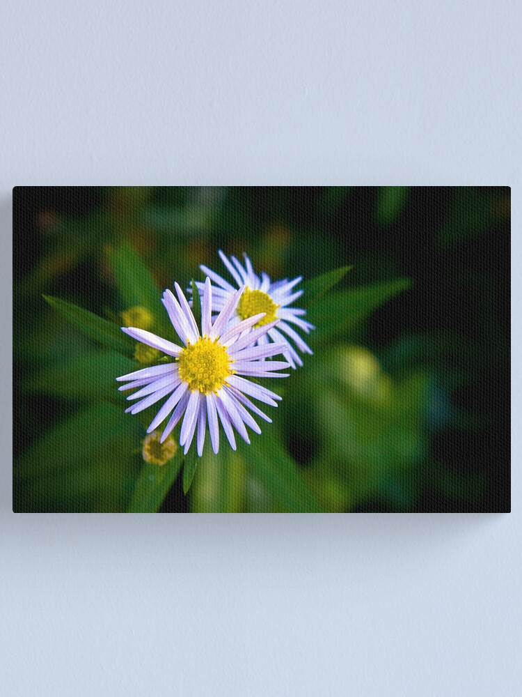 Alternate view of Petite fleur Canvas Print