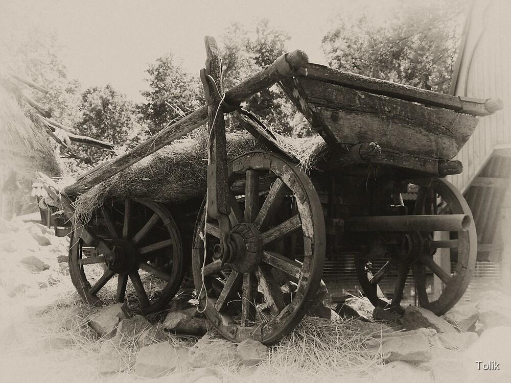 Old Wagon  by Tolik
