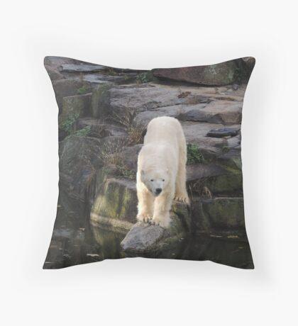 Polar Bear Rock (Berlin)  Throw Pillow