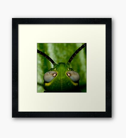 Alien Head Framed Print