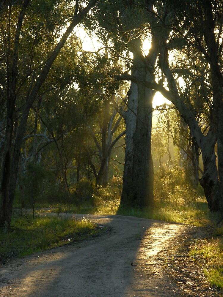 quiet walk by Gordon Slater
